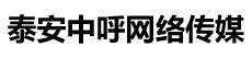 泰安中呼网络传媒logo